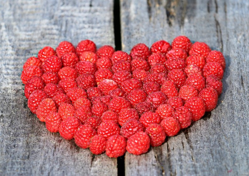 raspberries burn fat and help in weight loss