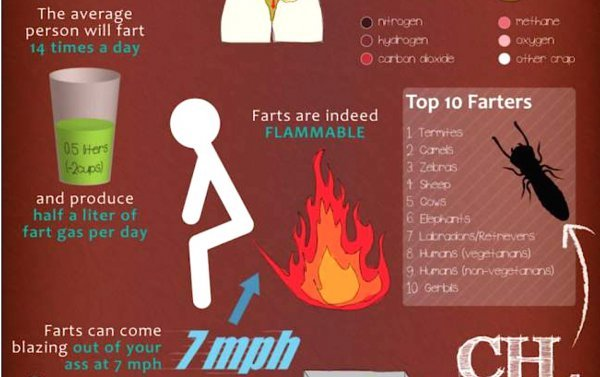 10 Facts You Don't Know About Your Farts