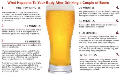 See What Happens To Your Body After Drinking a Couple of Beers