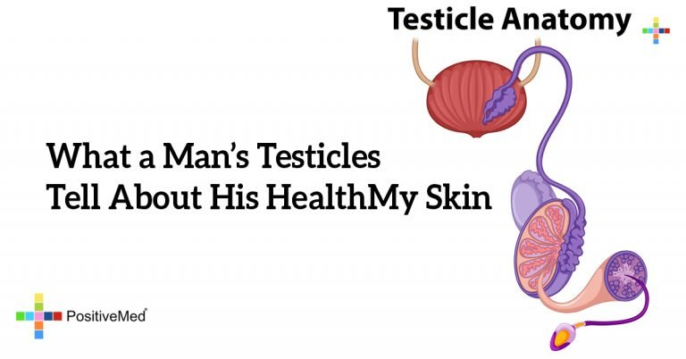 What a Man's Testicles Tell About His Health