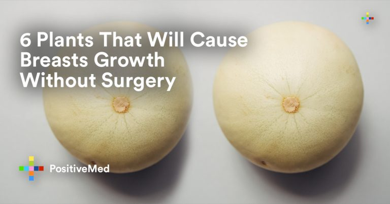 6 Plants That Will Cause Breasts Growth Without Surgery!