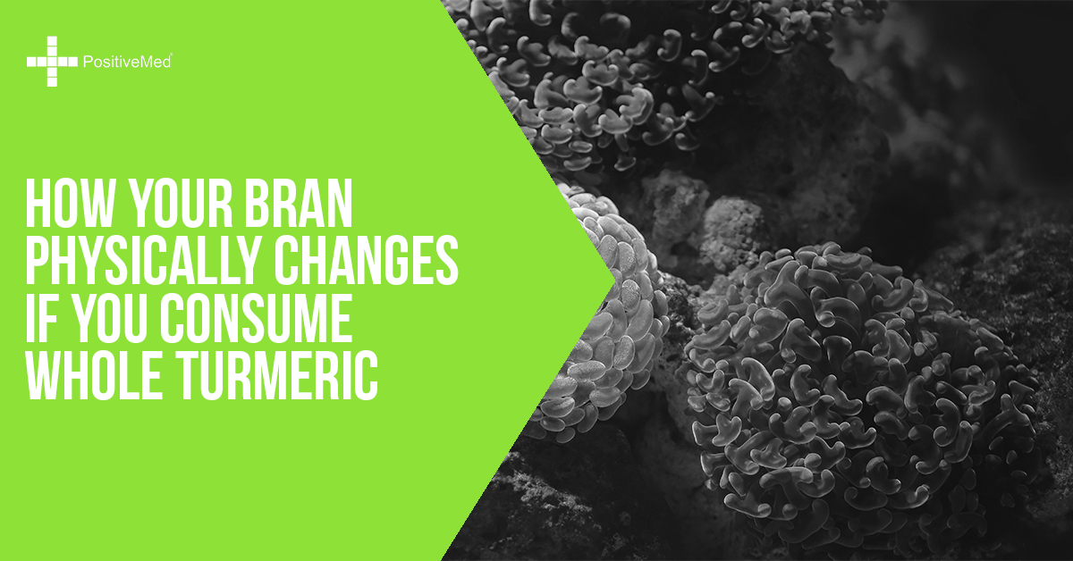 How Your Brain Physically Changes If You Consume Whole Turmeric
