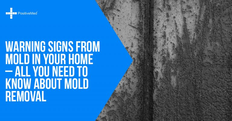 Warning Signs From Mold In Your Home – All You Need to Know About Mold Removal