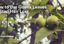 How to Use Guava Leaves to Stop Hair Loss.