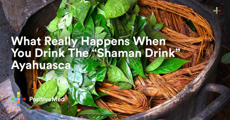"What Really Happens When You Drink The ""Shaman Drink"" Ayahuasca"