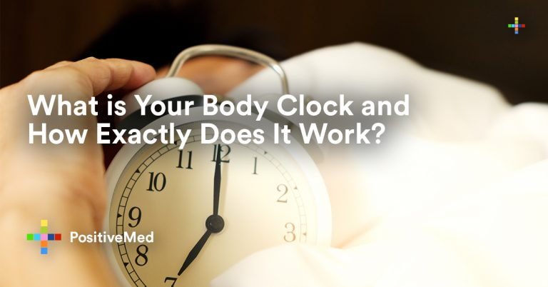 What is Your Body Clock and How Exactly Does It Work?