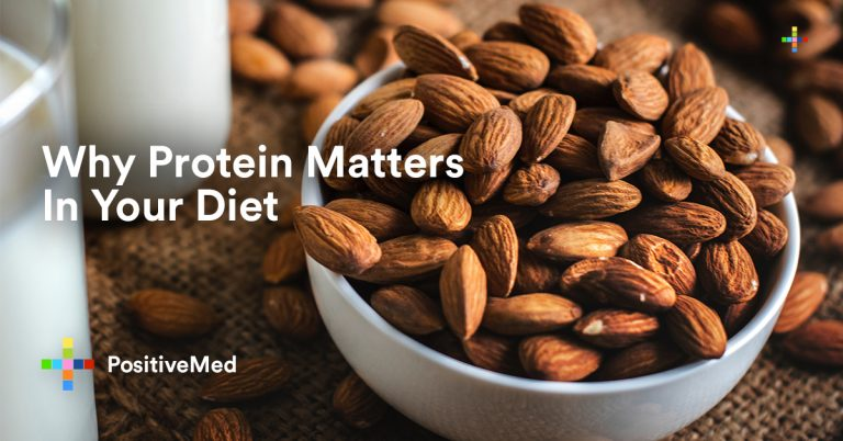Why Protein Matters In Your Diet