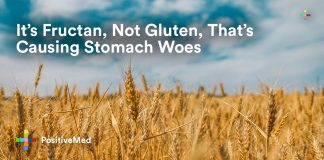 It's Fructan, Not Gluten, That's Causing Stomach Woes.