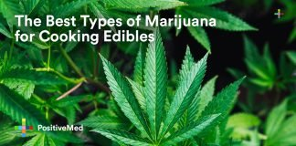 The Best Types of Marijuana for Cooking Edibles.