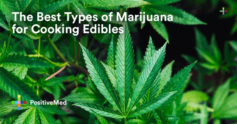 The Best Types of Marijuana for Cooking Edibles