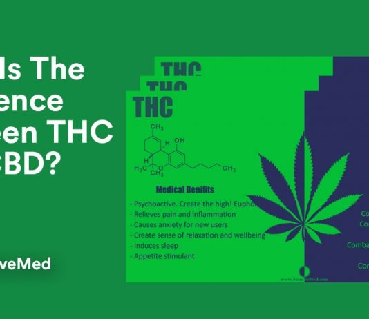 What Is The Difference Between THC And CBD