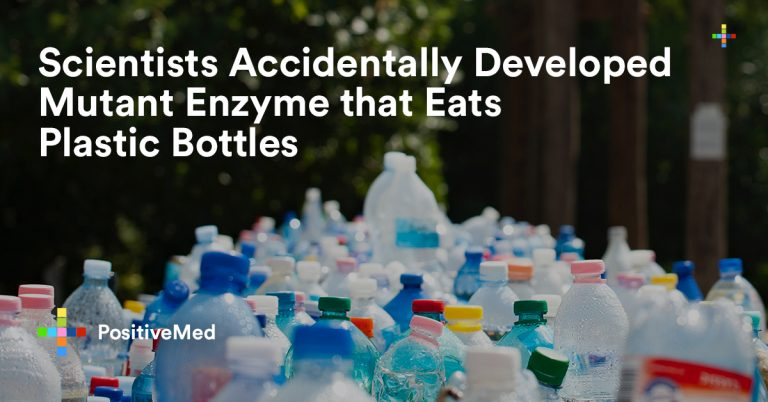 Scientists Accidentally Developed Mutant Enzyme that Eats Plastic Bottles