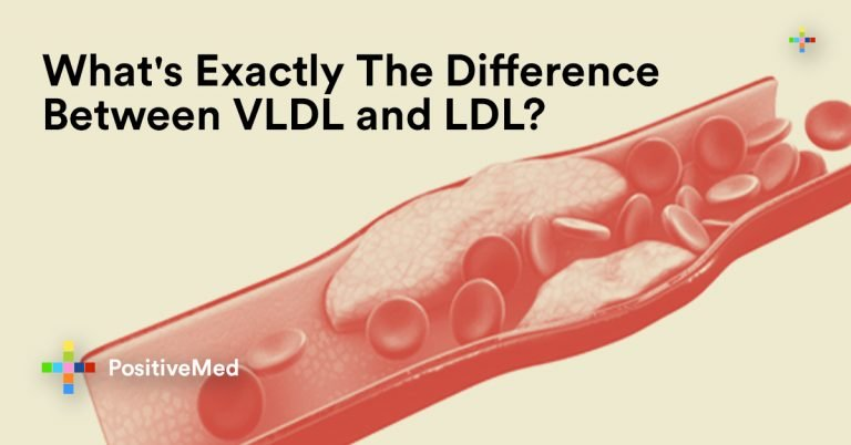 What's Exactly The Difference Between VLDL and LDL?