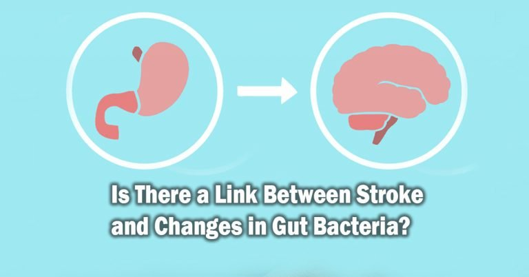 Is There a Link Between Stroke and Changes in Gut Bacteria?