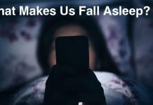 What Makes Us Fall Asleep?