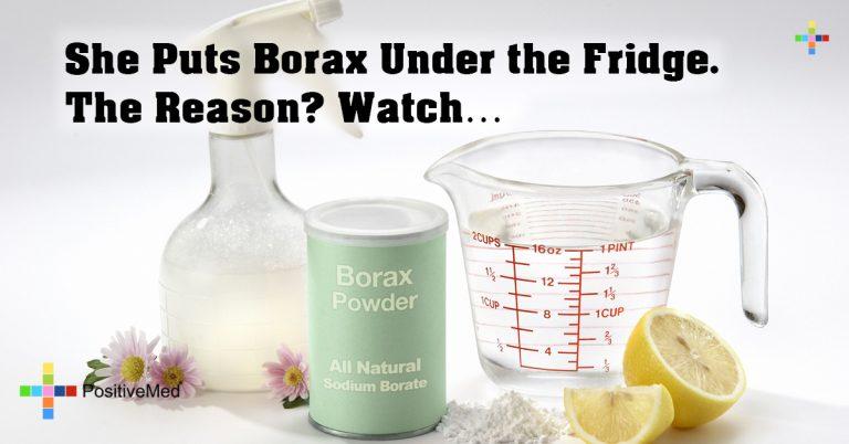 She Puts Borax Under the Fridge. The Reason? Watch…