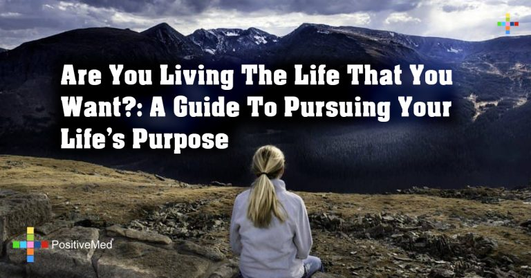 Are You Living The Life That You Want?: A Guide To Pursuing Your Life's Purpose