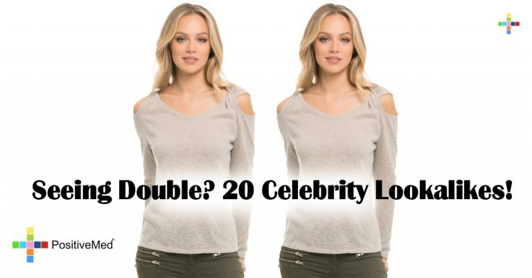 Seeing Double? 20 Celebrity Lookalikes!