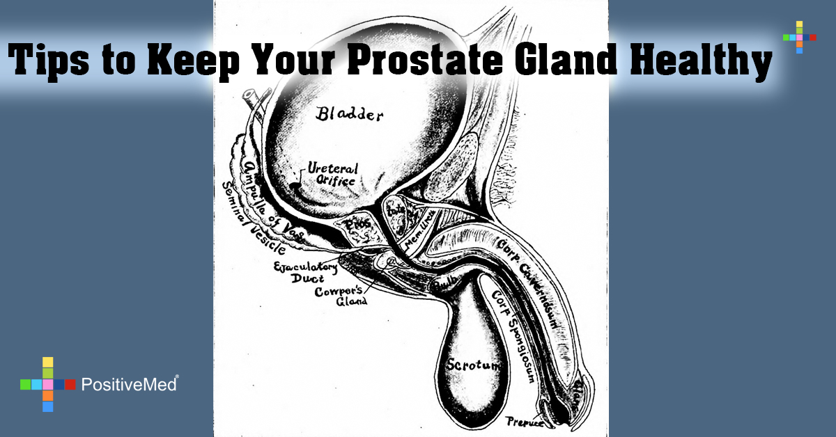 Tips to Keep Your Prostate Gland Healthy
