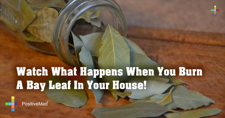 Watch What Happens When You Burn A Bay Leaf In Your House!