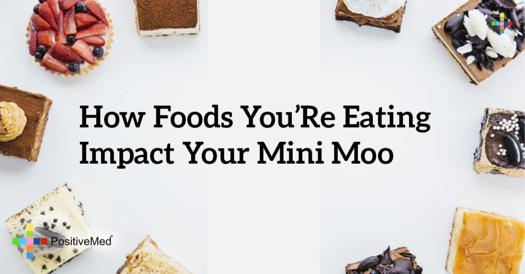 How Foods You're Eating Impact Your Mini Moo