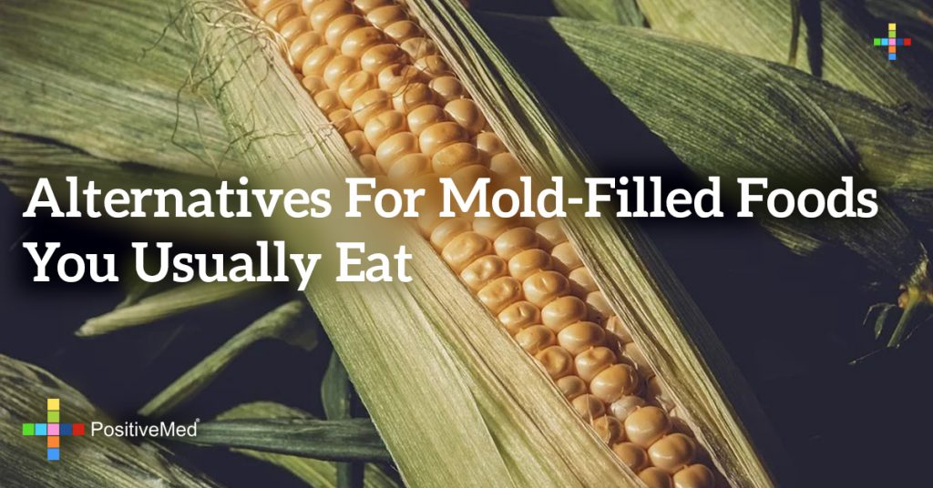 Alternatives for Mold-Filled Foods You Usually Eat
