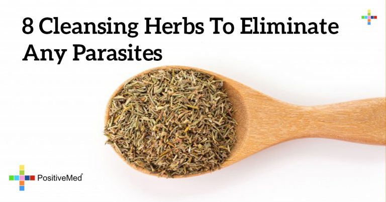 8 Cleansing Herbs to Eliminate Any Parasites