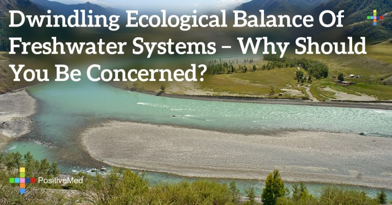 Dwindling Ecological Balance of Freshwater Systems – Why Should You Be Concerned?