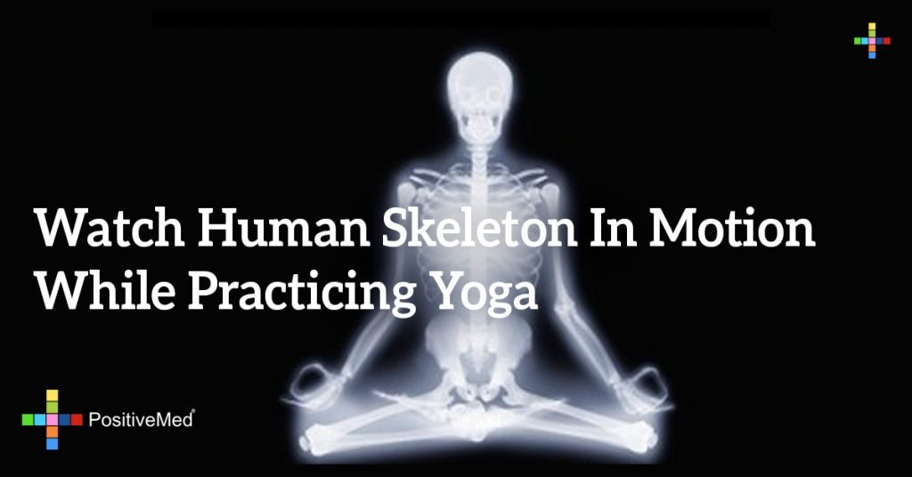Watch Human Skeleton in Motion While Practicing Yoga