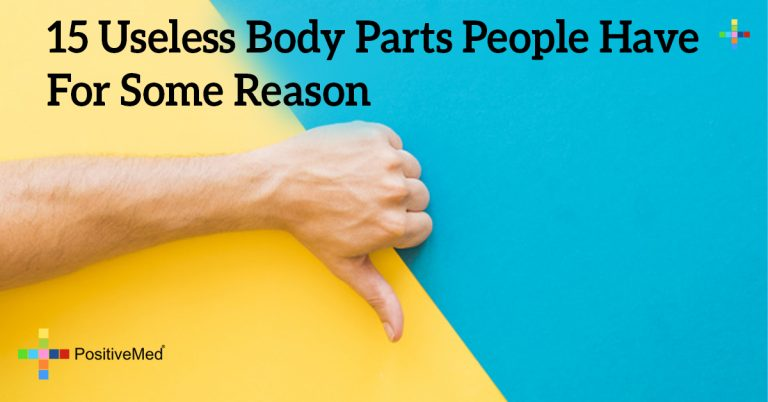 15 Useless Body Parts People Have For Some Reason