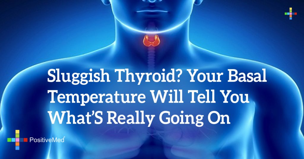 Sluggish Thyroid? Your Basal Temperature Will Tell You What's Really Going On