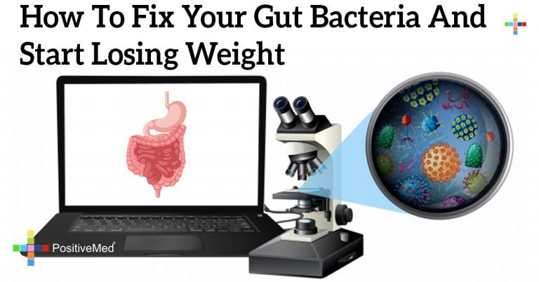 How to Fix Your Gut Bacteria and Start Losing Weight