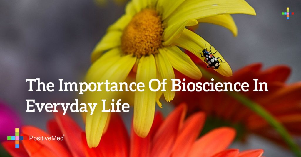 The Importance of Bioscience in Everyday Life
