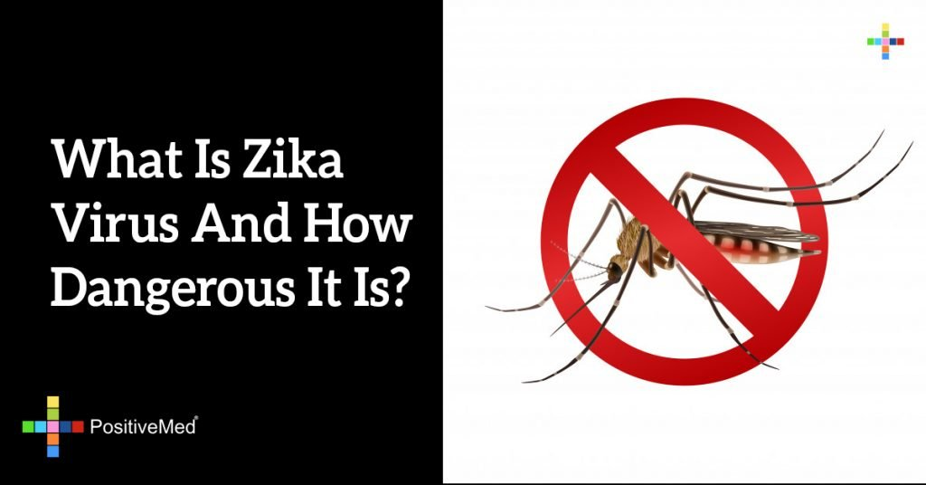What Is Zika Virus And How Dangerous It Is?