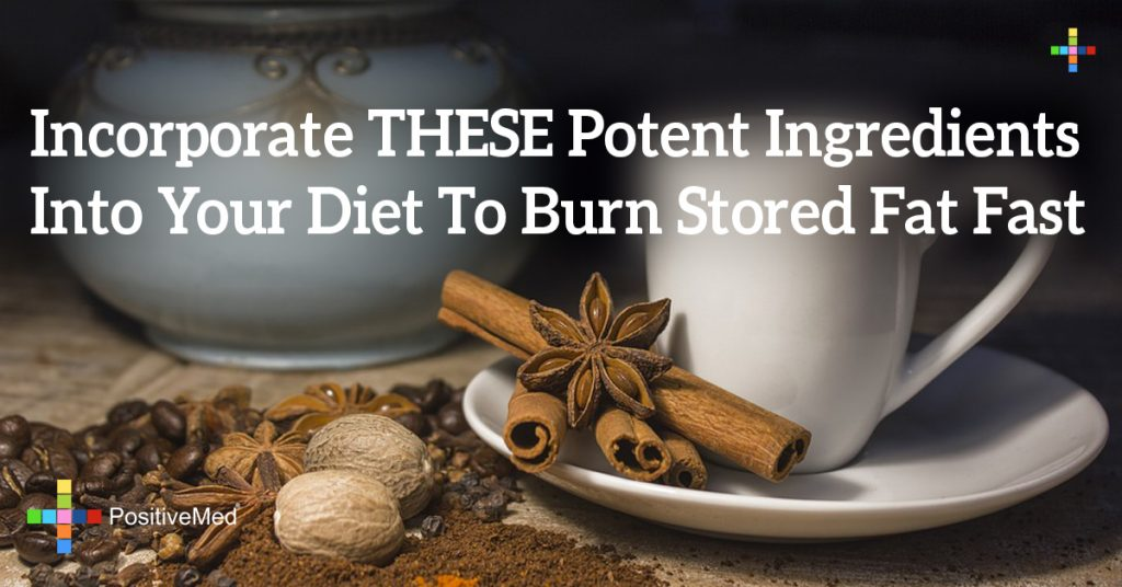 Incorporate THESE Potent Ingredients Into Your Diet To Burn Stored Fat Fast