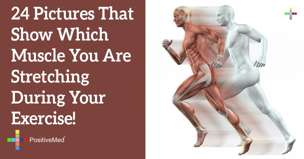 24 Pictures That Show Which Muscle You Are Stretching During Your Exercise!