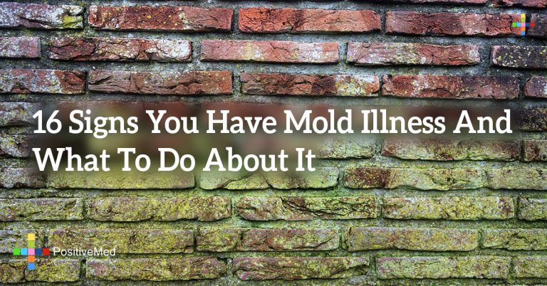16 Signs You Have Mold Illness And What To Do About It