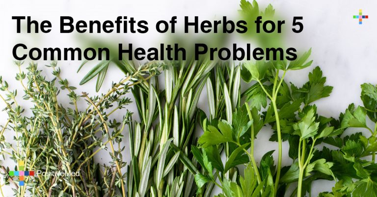 The Benefits of Herbs for 5 Common Health Problems
