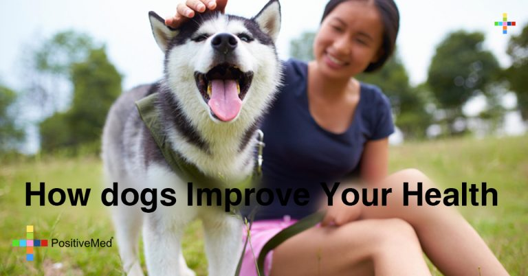 How dogs Improve Your Health