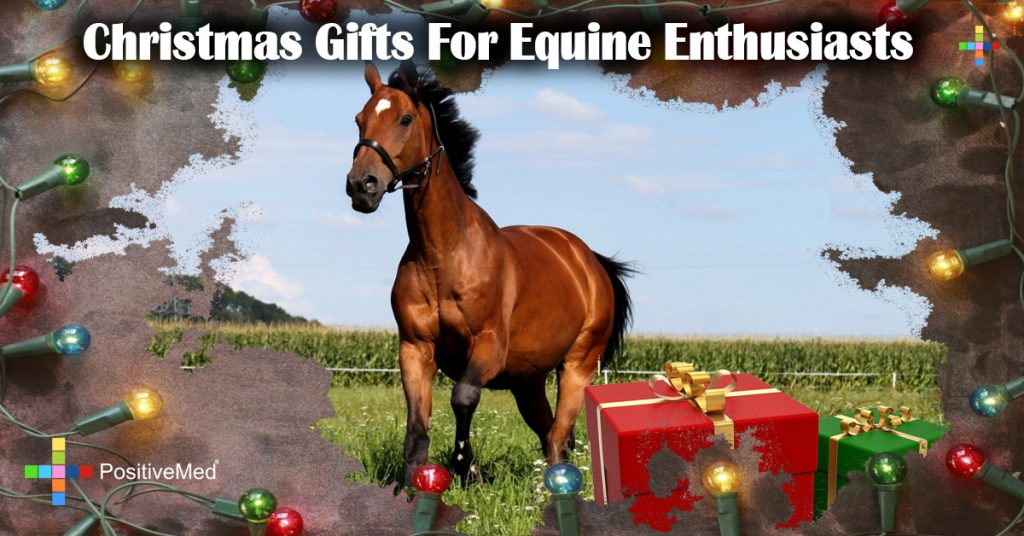Christmas Gifts For Equine Enthusiasts