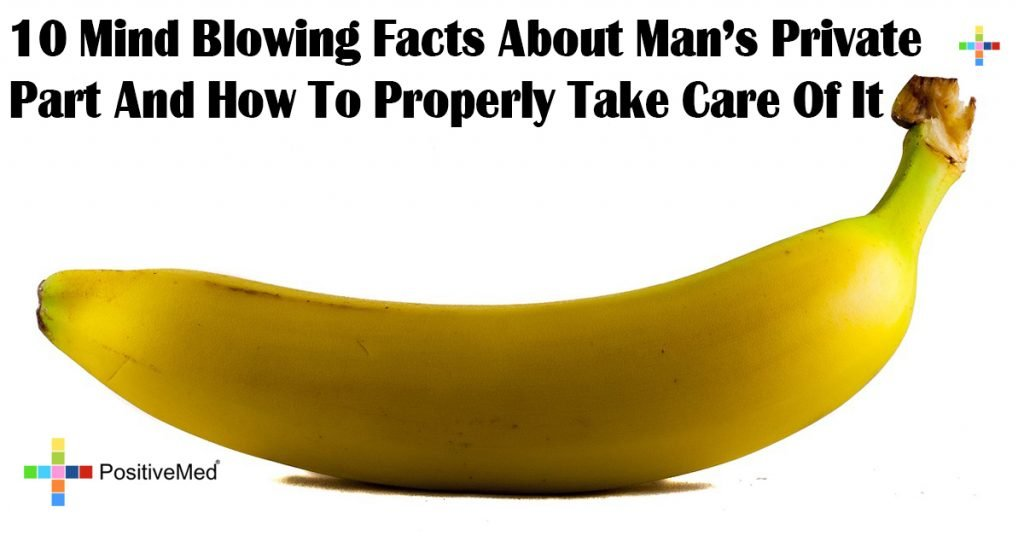 10 Mind Blowing Facts About Man's Private Part And How To Properly Take Care Of It