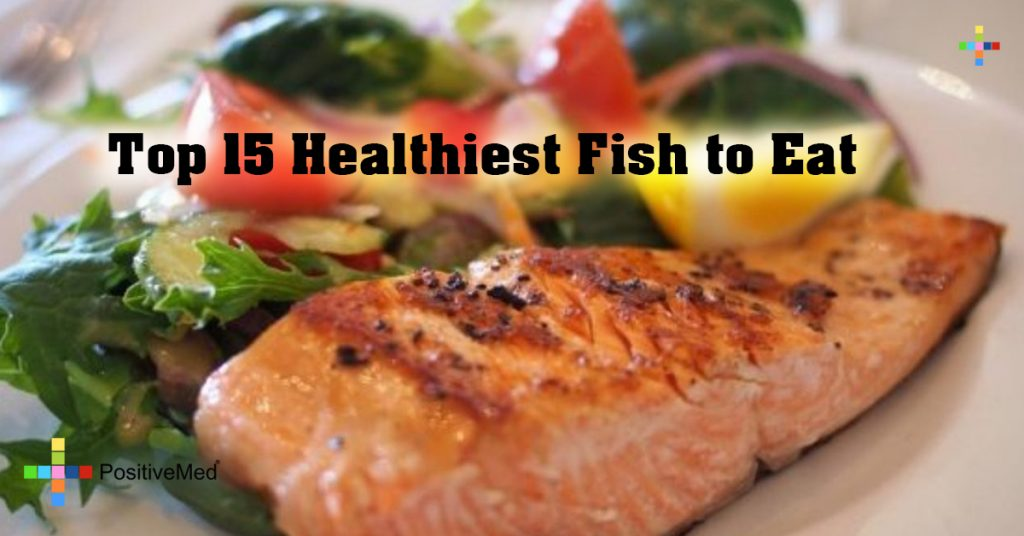Top 15 Healthiest Fish to Eat