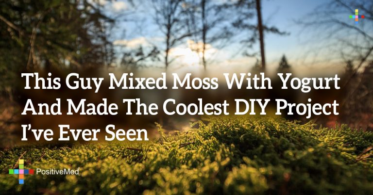 This Guy Mixed Moss With Yogurt And Made The Coolest DIY Project I've Ever Seen
