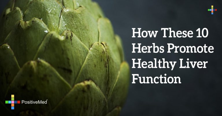 How These 10 Herbs Promote Healthy Liver Function