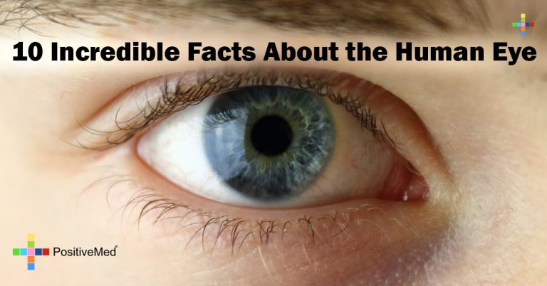 10 Incredible Facts About the Human Eye