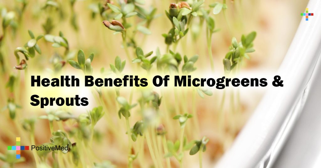 Health Benefits Of Microgreens & Sprouts
