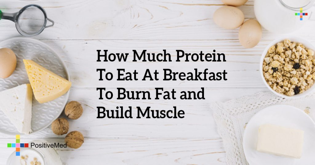 How Much Protein To Eat At Breakfast To Burn Fat and Build Muscle