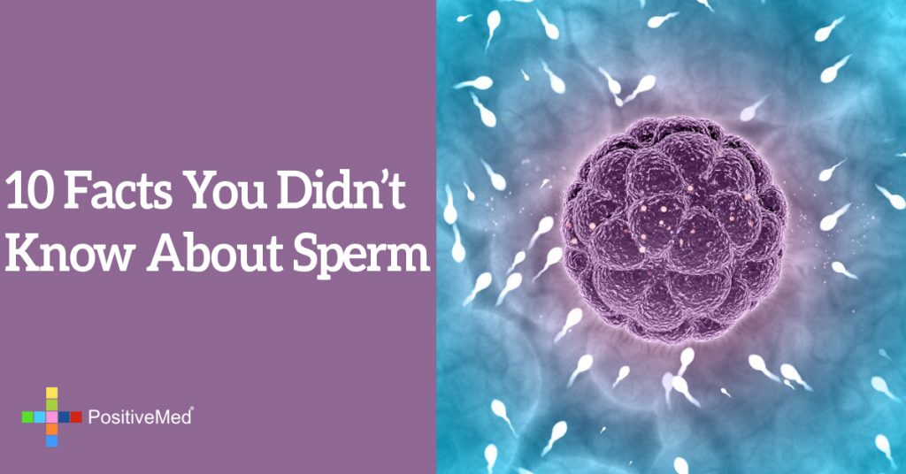 10 Facts You Didn't Know About Sperm