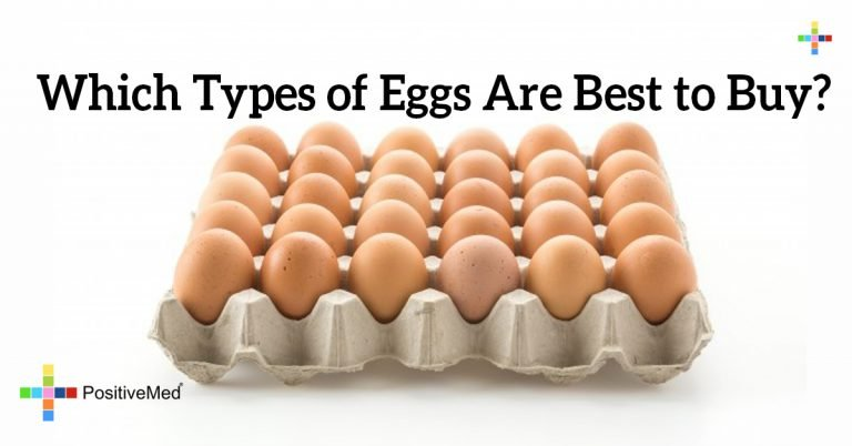Which Types of Eggs Are Best to Buy?