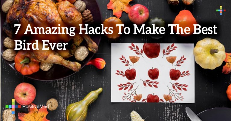 7 Amazing Hacks To Make The Best Bird Ever